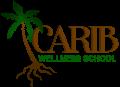 caribwebnessschool-logo-1.png