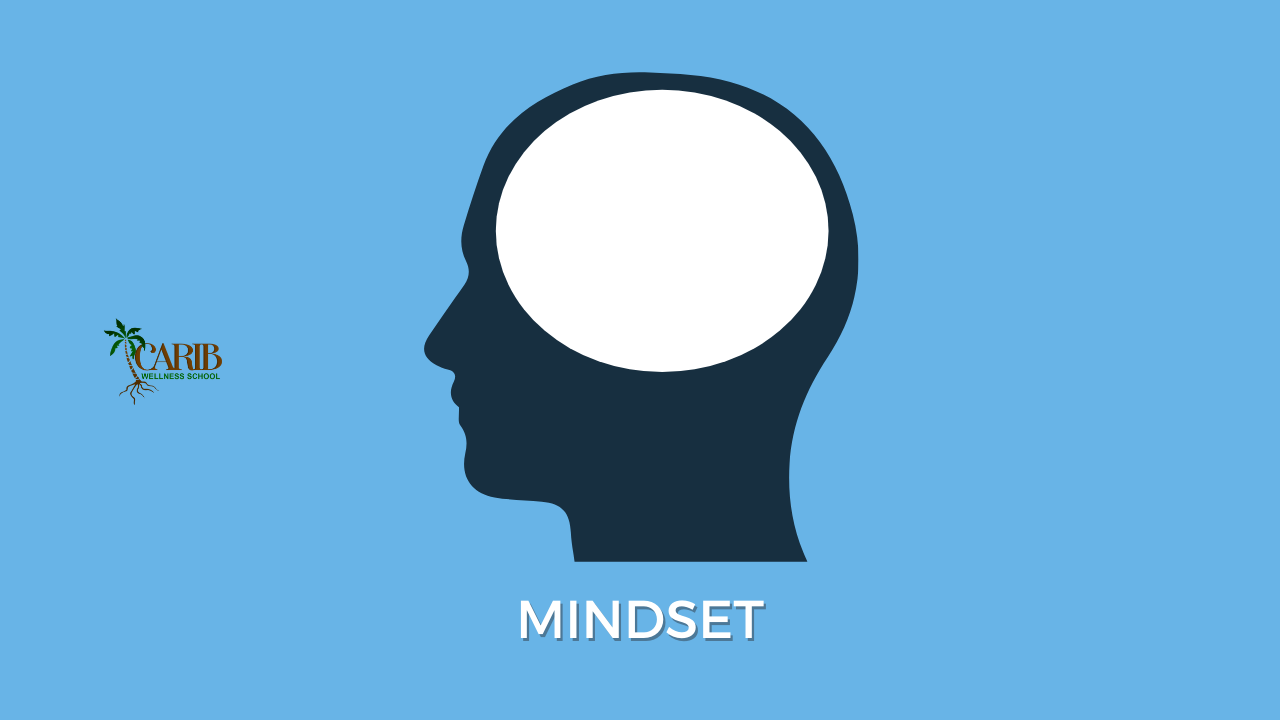 carib-wellness-school-mindset